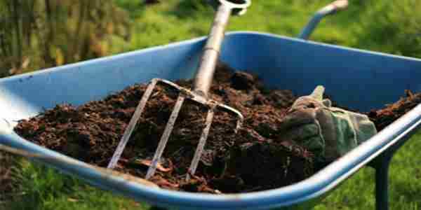 نحوه افزودن کود ارگانیک به خاک