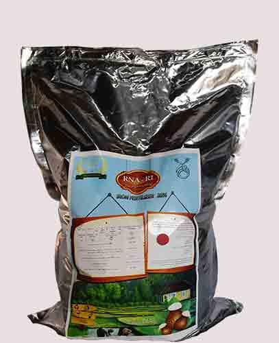 کود برنج کود مخصوص برنج کود آهن برای برنج کود رشد برنج R1