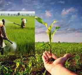 گسترش بخش کشاورزی و نهاده های کشاورزی