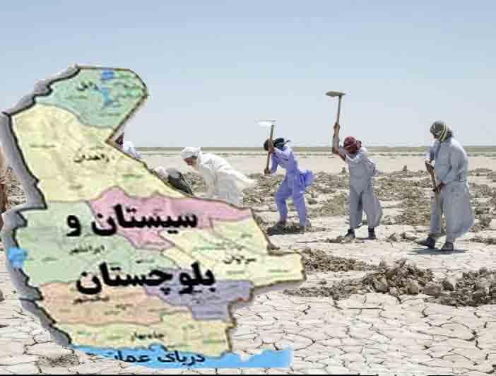 کشاورزی سیستان و بلوچستان محصولات سیستان