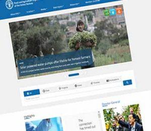 سازمان جهانی فائو و کیفیت محصولات کشاورزی