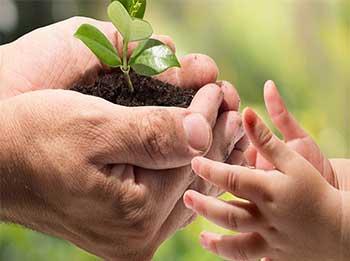 اهمیت محیط زیست