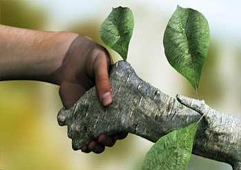 اثرات کشاورزی بر محیط زیست