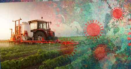 کرونا و کشاورزی