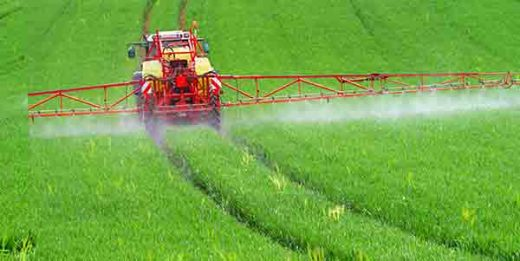 GMO چیست؟ غذاهای اصلاح شده ژنتیکی تعریف جی ام او
