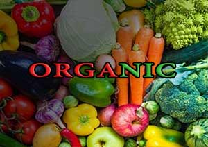 عملکرد مزارع ارگانیک و عملکرد محصولات زراعی